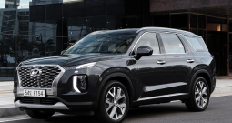Hyundai  Palisade 2019 New Model